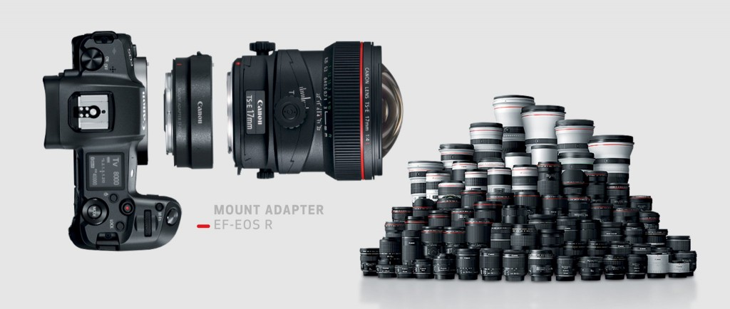 may-anh-canon-eos-rp-2